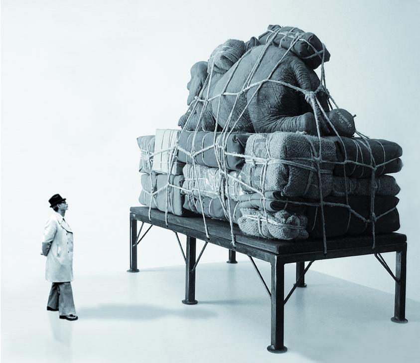 bagaglio elefante 1