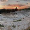 Un Bosco Morto per il progetto scenico de Le Troiane di Euripide