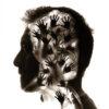Visioni non codificate | Maurizio Sapia