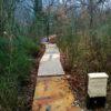 XII EDIZIONE LAND ART AL FURLO | CHIAMATA 2021 | Cento passi, tre fontane, un filo